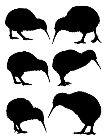 Silhouette of kiwi. Good use for symbol,  web icon, mascot, sign, or any design you want.