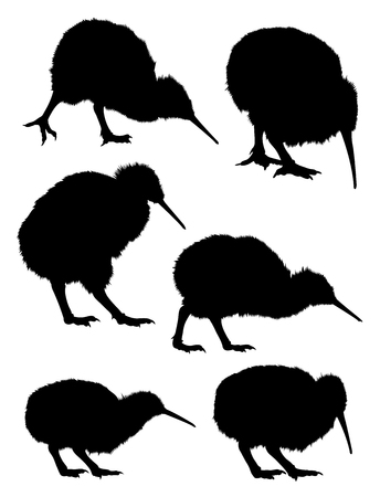 Silhouette of kiwi. Good use for symbol, logo, web icon, mascot, sign, or any design you want. Illustration