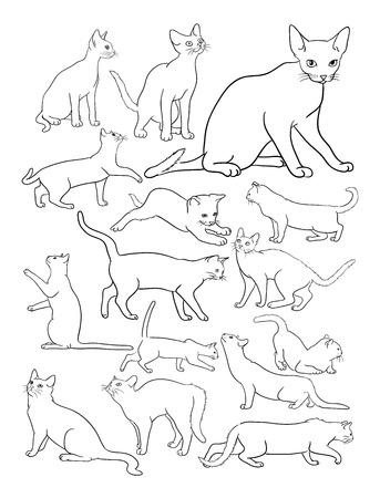 Dibujo de líneas de gatos. Buen uso de símbolo, logotipo, icono web, mascota, libro para colorear, letrero o cualquier diseño que desee.
