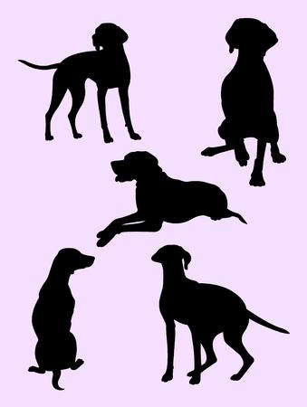 Viszla dog animal silhouette 01.  Good use for symbol, logo, web icon, mascot, sign, or any design you want.
