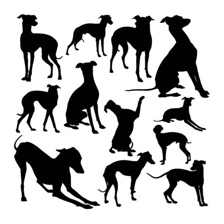 Italian greyhound  animal silhouettes. Good use for symbol, web icon, mascot, sign, or any design you want. 免版税图像 - 134033404
