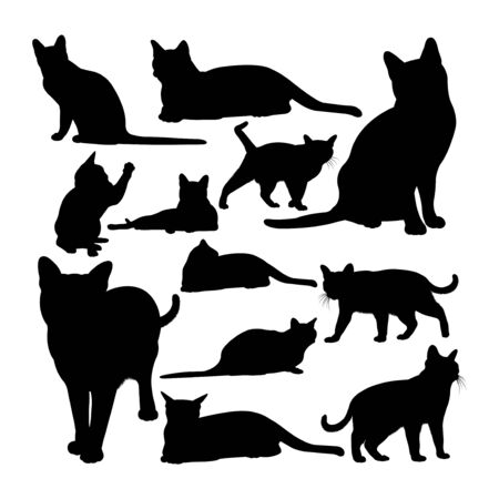 Korat cat animal silhouettes. Good use for symbol, logo, web icon, mascot, sign, or any design you want. 矢量图像