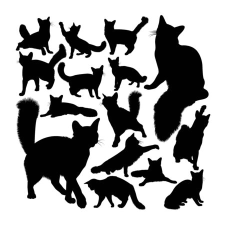 Orange somali cat animal silhouettes. Good use for symbol, logo, web icon, mascot, sign, or any design you want.