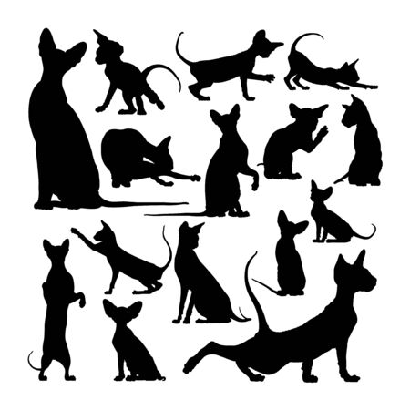 Peterbald cat animal silhouettes. Good use for symbol, logo, web icon, mascot, sign, or any design you want.