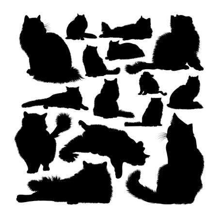 Ragdoll cat animal silhouettes on white