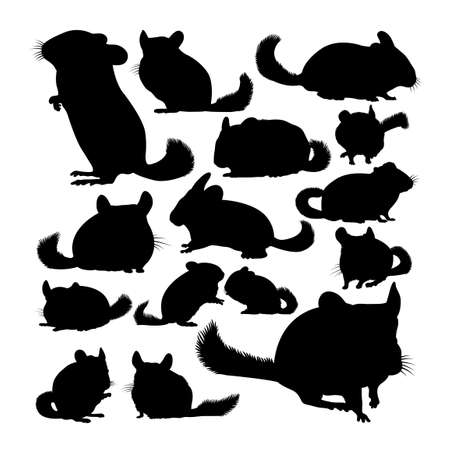 Chinchilla animal silhouettes on white 矢量图像