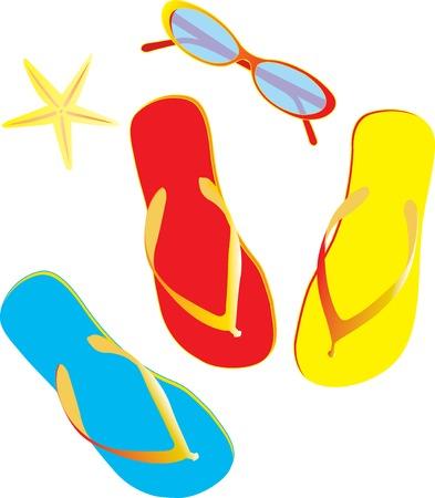 Vector illustration of flip flops isolated