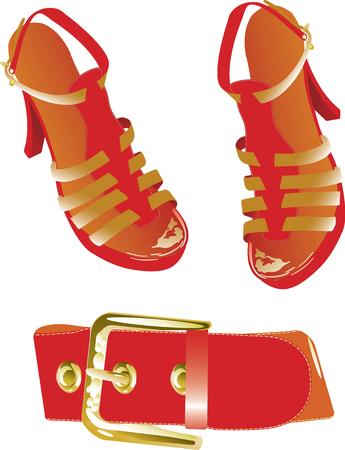 Vector illustration of red belt and shoes Illustration