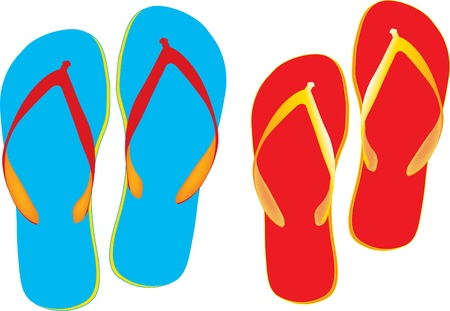blue and red Flip flops isolated on a white background Vector
