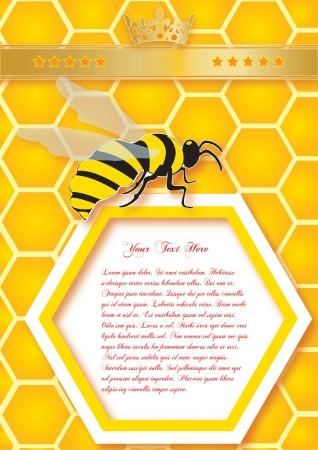 abejas panal: Panal y abejas de fondo vector con el espacio para el texto Vectores