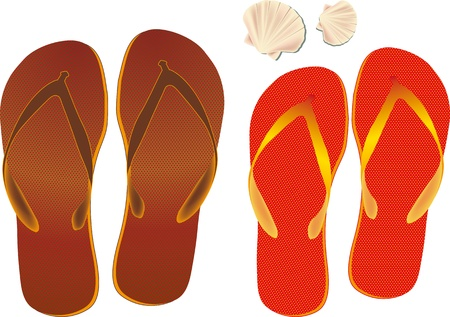 Flip flops and Shell in vector format isolated on a white background