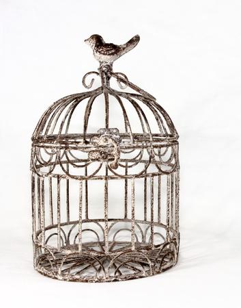metal birdcage in plain white space 版權商用圖片