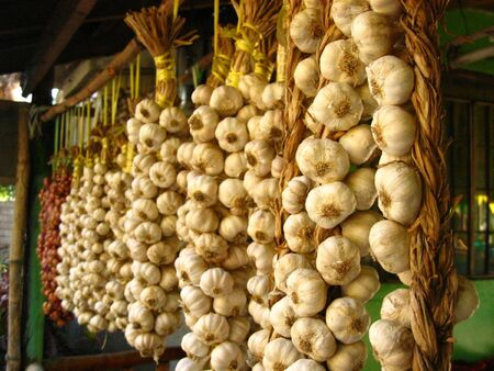 Garlic and Onion stand photo