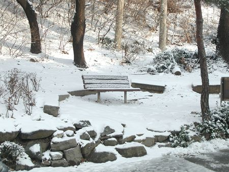 Park bench in the snow Stock Photo - 2130276