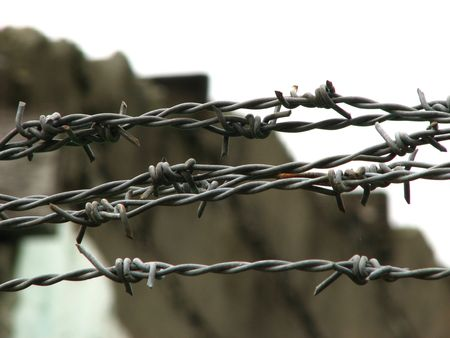 Barbed Wire Stock Photo - 3320563