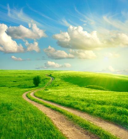 horizonte: Paisaje de verano con la hierba verde, por carretera y las nubes