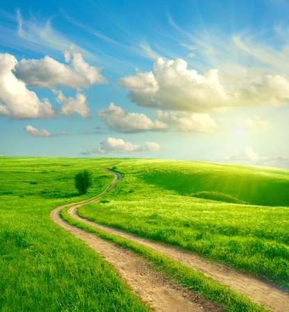 field sunset: Summer landscape with green grass, road and clouds  Stock Photo