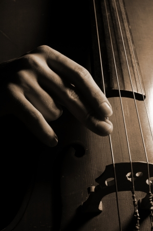 Musician playing contrabass photo