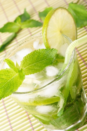 Mojito cocktail Stock Photo - 13698585