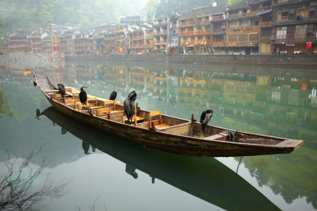 guilin: Cormorant birds on the boat. Old Chinese traditional town Stock Photo