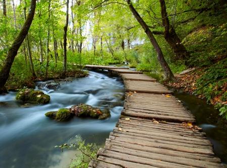 krajobraz: Deptak w parku Zdjęcie Seryjne