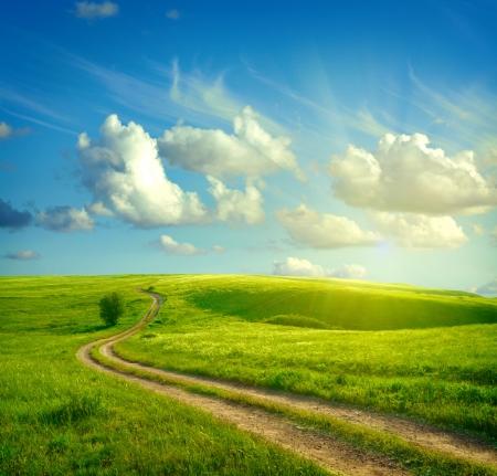 landscape: 緑の芝生、道路と雲との夏の風景