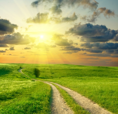 sunrise field: Summer landscape with green grass, road and clouds  Stock Photo