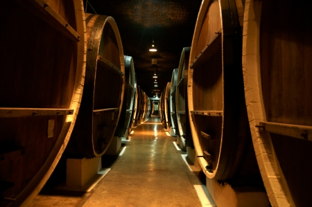 wine cellar: Wine barrels Stock Photo