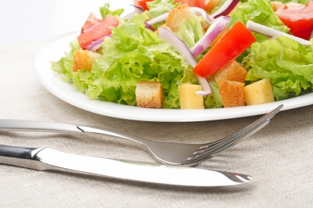 serviette: Salad on white plate