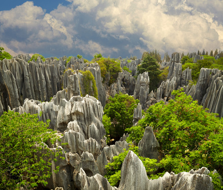 kunming: Stone forest Shi Lin. National park in Yunnan province, China