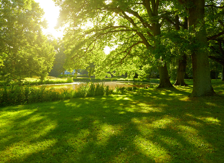 Summer park in Hamburg, Germany Archivio Fotografico