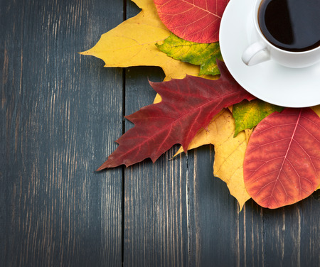 foursquare: Cup of coffee and autumn leaves over dark wooden background