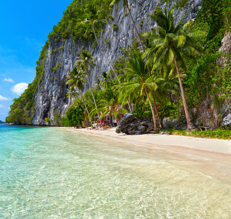 nido: Beautiful island. Blue bay and palm trees. El Nido, Palawan, Philippines Stock Photo