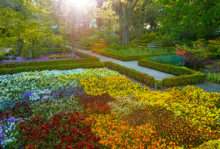 botanic: Madrid Botanic Garden - Real Jardin Botanico. Spring time Stock Photo