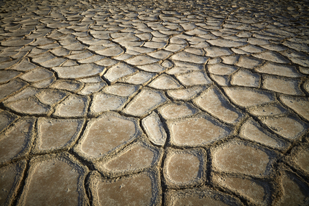 infertile: Dried and cracked earth background