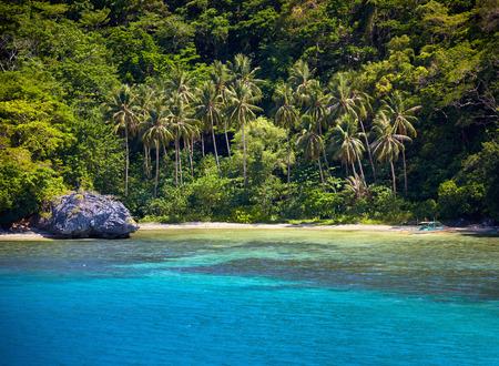 palawan: Blue bay and palm trees. El Nido, Palawan island, Philippines