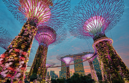 esplanade: Supertrees at Gardens by the Bay. Singapore