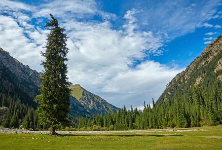 Tian Shan mountains. Kyrgyzstan, Central Asia