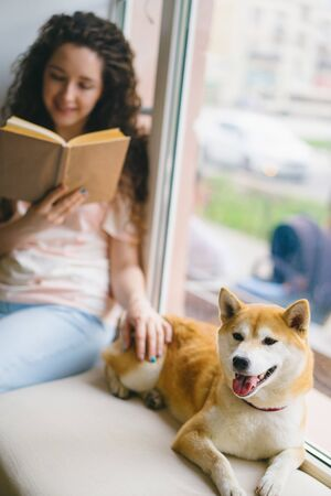 Good-looking girl student is stroking shiba inu dog and reading book in cafe on window sill enjoying modern literature. Youth culture and domestic animals concept.