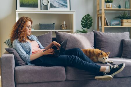 Young woman freelancer is working with laptop typing sitting on sofa at home with cute dog lying near her. Distant online work, animals and people concept. Imagens