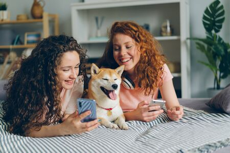 Beautiful curly-haired young women sisters talking using smartphones and caressing pedigree dog lying on bed in apartment. People and gadgets concept.