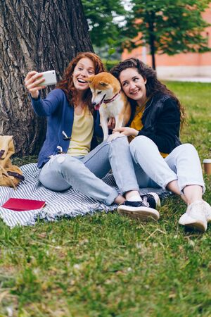 Good-looking curly-haired girls are taking selfie with doggy in park using smartphone camera hugging and stroking animal. People and emotions concept. Imagens