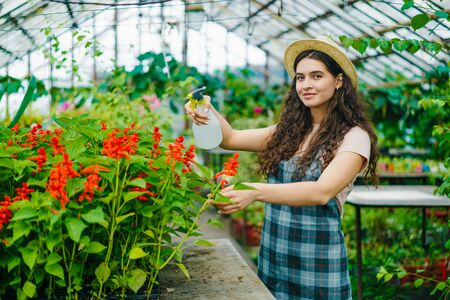 Portrait of pretty girl farmer using spray bottle in greenhouse watering flowers smiling looking at camera. Occupation, happy people and lifestyle concept.