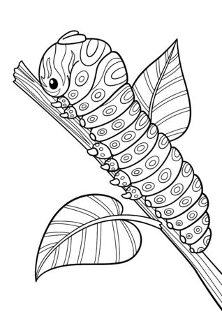 Antistress doodle coloring book page for adult. Caterpillar in zenyangle stule. Black and white vector illustration. Stock vector illustration