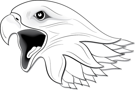 Illustration of eagle Stock Vector - 24747699