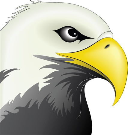 Illustration of eagle  Vector