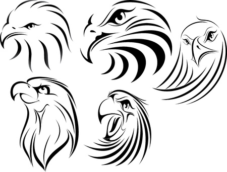set of eagle illustration  Vector