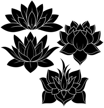 illustration of set lotus silhouette Banco de Imagens - 24747981