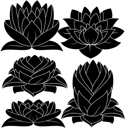 illustration of set lotus silhouette  Vector