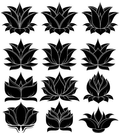 illustration of set lotus silhouette Stock Vector - 24747987